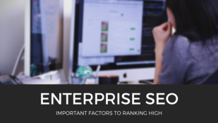 Enterprise SEO: Important Factors to Rank High [Infographic]