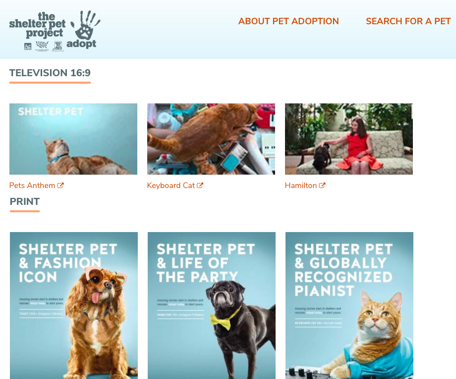 The Shelter Pet Project campaign
