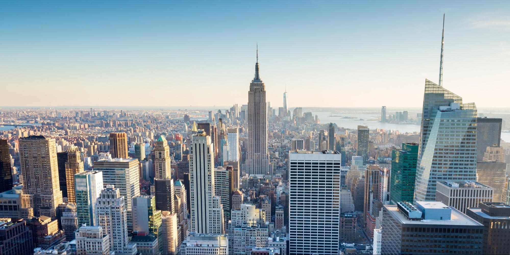 New York SEO Agency   NYC SEO - Single Grain