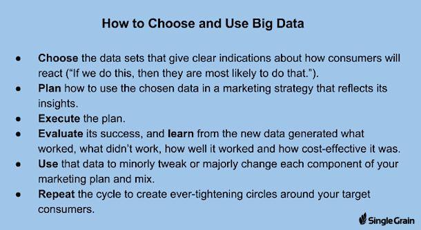 Single Grain_How to Choose and Use Big Data logo