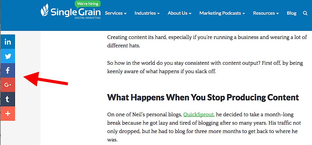 Single Grain How to Produce High-Quality Content Consistently and Not Waste Your Money