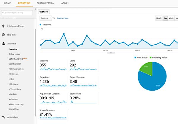 Google-Analtics-Website-Traffic