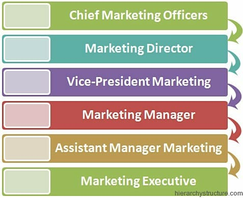 Marketing Department Corporate Hierarchy | Hierarchy Structure Marketing Department Hierarchy