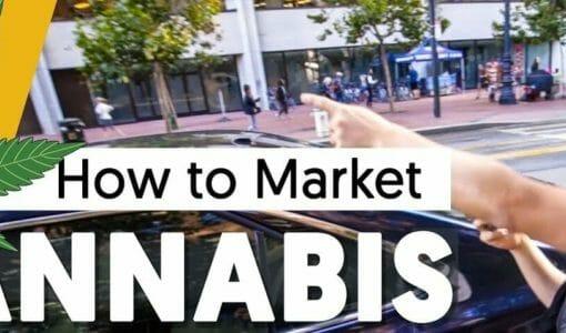 Creative Marketing Strategies: How to Market a Cannabis Company